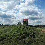 Zebrana trawa trafia na pryzmę gdzie jest dokładnie ugniatana i zabezpieczana dodatkiem kiszonkarskim